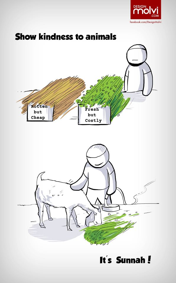 Kartun Dakwah#156 : Show Kindness To Animals, It's Sunnah.